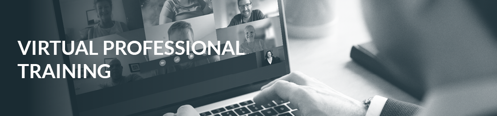 virtual-professional-training Training Banner